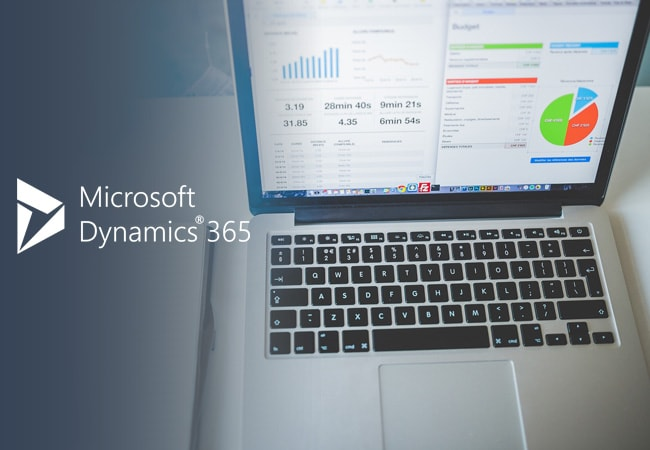Customized Dynamics 365 to a Media Business
